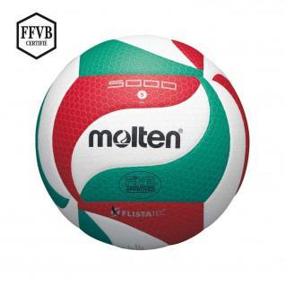 Bola de competición Molten V5M5000 LNV